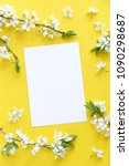 spring concept. flat lay of... | Shutterstock . vector #1090298687