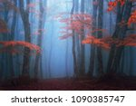 Small photo of fantasy moody forest in autumn