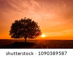 a solitary tree | Shutterstock . vector #1090389587