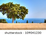 View from the Monastery of Preveli to the tree and the Libyan Sea - stock photo