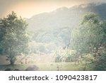 clouds  haze and light rain on... | Shutterstock . vector #1090423817