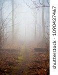 Small photo of Foggy Trail, Appalachian Trail, A Dirt Path Through Morning Fog
