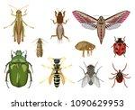 vector detailed set of... | Shutterstock .eps vector #1090629953