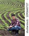 Small photo of Young handsome farmer with tablet squatting in soybean field in spring. Agribusiness and innovation concept