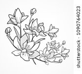 flower branch and leaves. hand...   Shutterstock .eps vector #1090764023