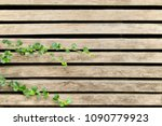 pale lath with green top leaves ...   Shutterstock . vector #1090779923