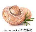 brown champignon mushroom and... | Shutterstock . vector #109079663