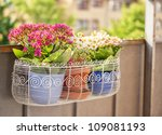 An Image Of A Balcony Flower...