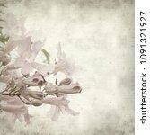 textured old paper background... | Shutterstock . vector #1091321927