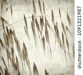 textured old paper background... | Shutterstock . vector #1091321987