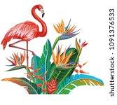 arrangement from tropical... | Shutterstock .eps vector #1091376533