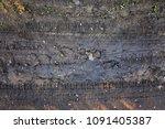 wet soil with tire print | Shutterstock . vector #1091405387