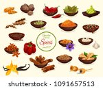 spice  condiment and seasoning... | Shutterstock .eps vector #1091657513