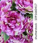 artificial flower image   Shutterstock . vector #1091660417