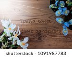 sunny crocus and hyacinth  text ... | Shutterstock . vector #1091987783