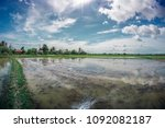a serene view of watering and... | Shutterstock . vector #1092082187