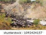 great migration in africa. huge ... | Shutterstock . vector #1092424157