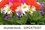 bouquet of flowers isolated on... | Shutterstock . vector #1092475337