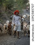 Small photo of Jojawar, INDIA - February 27, 2015: Unidentified Indian man walking with his herd of goats near the city of Jojawar