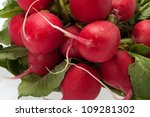 Garden radish on white background - stock photo