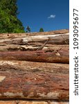 Small photo of Closeup of pile of trunks of felled trees, in sawmill enabled for wood production for civil construction