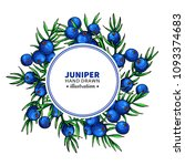 juniper vector drawing frame.... | Shutterstock .eps vector #1093374683