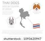dogs by country of origin. thai ... | Shutterstock .eps vector #1093620947