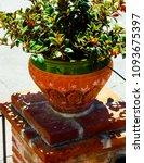 beautiful ceramic flower pot on ...   Shutterstock . vector #1093675397