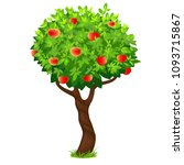 apple tree  vector tree with... | Shutterstock .eps vector #1093715867