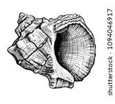 handdrawn sketch of a seashell... | Shutterstock .eps vector #1094046917