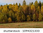 dense forest and field in the... | Shutterstock . vector #1094321333