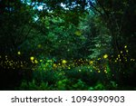 Small photo of Abstract and magical image of Firefly flying in the night forest in Thailand