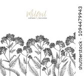 hand drawn wild hay flowers.... | Shutterstock .eps vector #1094479943