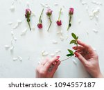rose buds and camomile petals...   Shutterstock . vector #1094557187