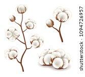 cotton flowers detailed photo... | Shutterstock .eps vector #1094726957