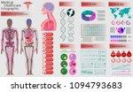 medical infographic set. human...   Shutterstock .eps vector #1094793683
