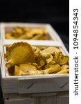 chanterelle mushrooms  in the...   Shutterstock . vector #1094854343