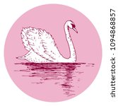 vector swan illustration with... | Shutterstock .eps vector #1094868857