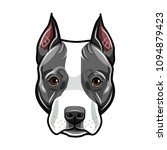 staffordshire terrier head. dog ... | Shutterstock .eps vector #1094879423