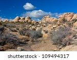 joshua tree national park in...   Shutterstock . vector #109494317