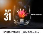 still light a smoking cigarette ...   Shutterstock . vector #1095262517