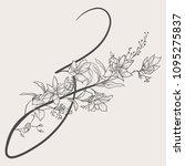 vector hand drawn flowered z...   Shutterstock .eps vector #1095275837