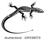 Black Lizard With Natural...