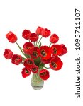 bouquet red flowers tulips in a ...   Shutterstock . vector #1095711107