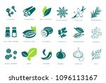 fragrant spices linear icons... | Shutterstock .eps vector #1096113167