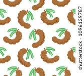 vector illustration tamarind... | Shutterstock .eps vector #1096129787