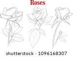 several beautiful black... | Shutterstock .eps vector #1096168307