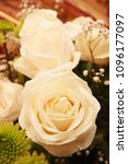 the details of the roses  which ...   Shutterstock . vector #1096177097