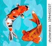 eastern goldfish. vector... | Shutterstock .eps vector #1096403237