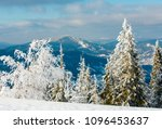 Small photo of Morning winter calm mountain landscape with beautiful frosting trees and snowdrifts on slope (Carpathian Mountains, Ukraine, Trostian mount in far) mount in far)